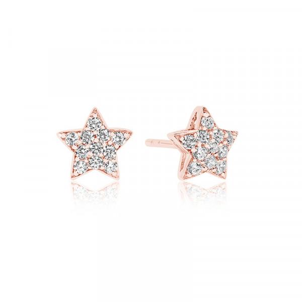 Stjerneformede ørestikkere